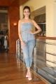 Actress Kriti Kharbanda Pics @ Pagalpanti Movie Promotions