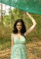 Kriti Kharbanda Hot Photo Shoot Stills