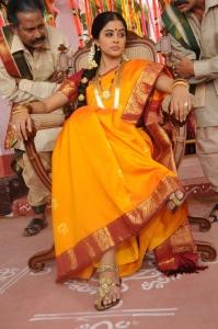 Kshetram Movie Priyamani Stills