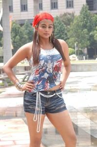 Kshetram Priyamani Hot Pics
