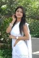 Telugu Actress Kumkum Hot in Saree Stills