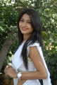 Telugu Actress Kumkum Saree Hot Stills