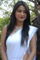 Telugu Heroine Kumkum in White Saree Hot Stills