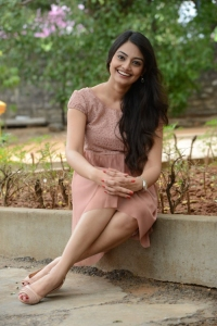 Nikitha Narayan @ Ladies and Gentleman Promotional Song Launch Stills