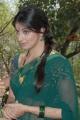 Lakshmi Rai in Saree Photos at Rani Ranamma Movie Opening