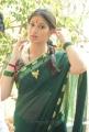 Lakshmi Roy Saree Photos at Rani Ranamma Movie Launch