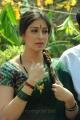 Lakshmi Roy Green Saree Photos at Rani Ranamma Movie Launch