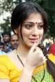 Beautiful Lakshmi Rai in Saree Photos