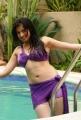 Adhinayakudu Lakshmi Rai Hot in Bikini Photos