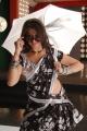 Lakshmi Rai Hot Dance @ Kanchana Movie