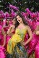 Adhinayakudu Lakshmi Rai Hot Stills