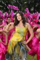 Lakshmi Rai Hot Stills in Adhinayakudu
