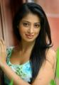 Lakshmi Rai Latest Photoshoot Stills