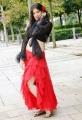 Lakshmi Rai New Hot Pictures in Adhinayakudu
