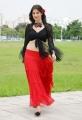 Adhinayakudu Heroine Hot Pictures