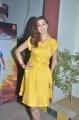 Actress Raai Laxmi Photos @ Motta Shiva Ketta Shiva Press Meet