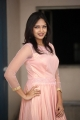 Actress Lavanya Chowdary Photos @ Undiporaadhey Trailer Launch