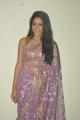 Telugu Actress Lavanya Tripathi Hot Photos in Transparent Saree