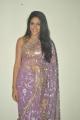 Telugu Actress Lavanya Tripathi Hot Saree Photos