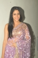 Actress Lavanya Tripathi Hot in Designer Embroidered Saree Photos