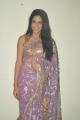 Actress Lavanya Tripathi Hot in Transparent Saree Photos