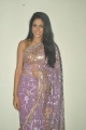 Actress Lavanya Tripathi Hot Stills at Cinema Mahila Awards 2013