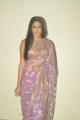 Lavanya Tripathi Hot Saree Stills at Cinemaa Mahila Awards
