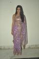 Lavanya Tripathi Hot Saree Stills at Cine Maa Mahila Awards