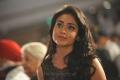 Actress Shriya at Life Is Beautiful Audio Release Photos