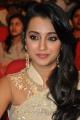 Lion Heroine Trisha Krishnan Cute Saree Stills