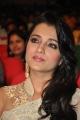 Lion Movie Heroine Trisha Cute Saree Stills