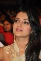 Lion Movie Actress Trisha Cute Saree Stills