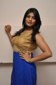 Soumya @ Lion Movie Success Meet Stills
