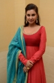 Actress Lisa Ray in Red Dress Photos