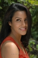 Actress Priya Anand in Live Telugu Movie Stills