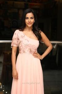 Heroine Priya Anand @ LKG Movie Success Meet Photos