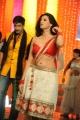 Gopichand, Hamsa Nandini in Loukyam Movie Song Stills