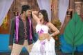 Shanthanu, Kausha Rach Hot in Love In Hyderabad Movie New Photos
