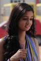 Shanvi - Lovely Movie Heroine Pics