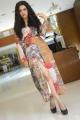 Actress Lovely Singh Photos @ Gaali Sampath Movie Interview