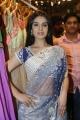 Lucky Sharma Hot Saree Stills at Kalamandir Showroom Launch