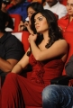 Beautiful Lucky Sharma in Red Dress at Paisa Audio Release