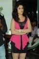 Telugu Actress Sidhika Sharma Spicy Hot Photos at Paisa Logo Launch
