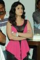 Actress Lucky Sharma Hot Spicy Photos at Paisa Logo Launch