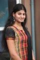 Actress Parvathy Suresh at Maadapuram Movie Audio Launch Stills