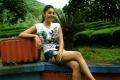 Actress Sanam Shetty Hot in Maayai Movie Photos