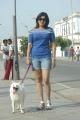 Actress Sheryl Pinto in Machan Movie Hot Pics