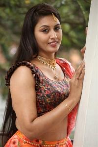 Actress Madhavi Hot Pictures @ King of Golkonda Press Meet
