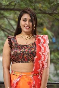 Actress Madhavi Pictures @ King of Golkonda Press Meet