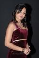 Madhavi Latha Latest Hot Stills at Aravind 2 Audio Launch